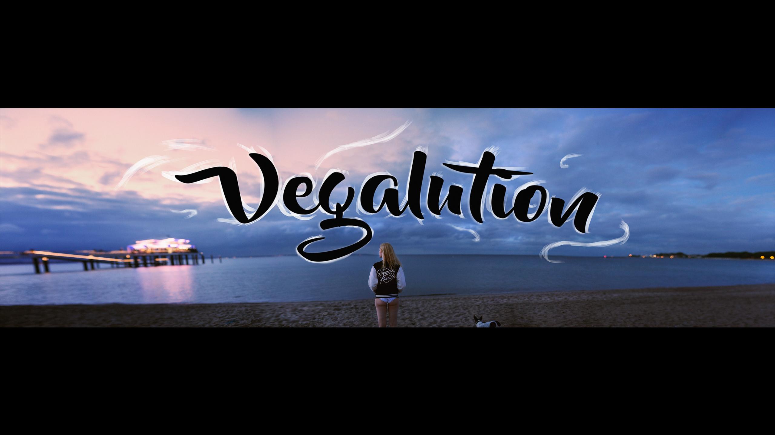 Vegalution_titelbild_2punkt0